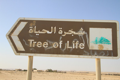 My Tree of Life odyssey in Bahrain