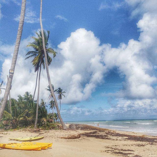 #beachlife ... Working on my tan and some #instabeach #instabeaches ....#trinitravels #trinitraveller #trinihotfoot #PEIBrownGuyinPUJ #triniswhotravel #trinitravelbloggers #trini #travellingtrinis #ig_travel #puntacana #sensatori #trinigram #dominicanrepublic #puntagram